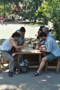 Chess players in the park