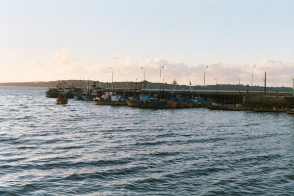 Fishing boats in Ancúd