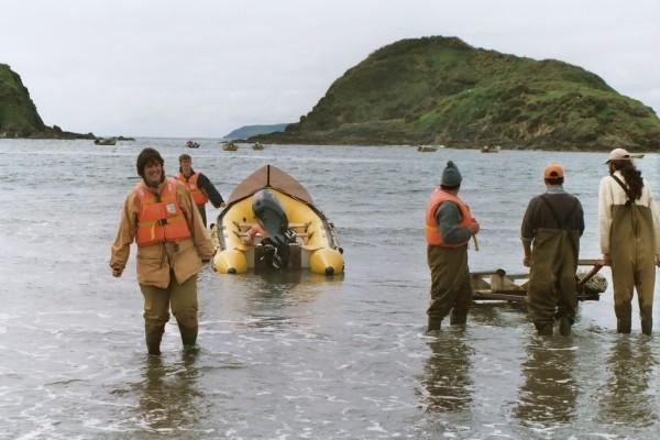Wading back ashore