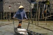 Highlight for Album: Mekong Delta
